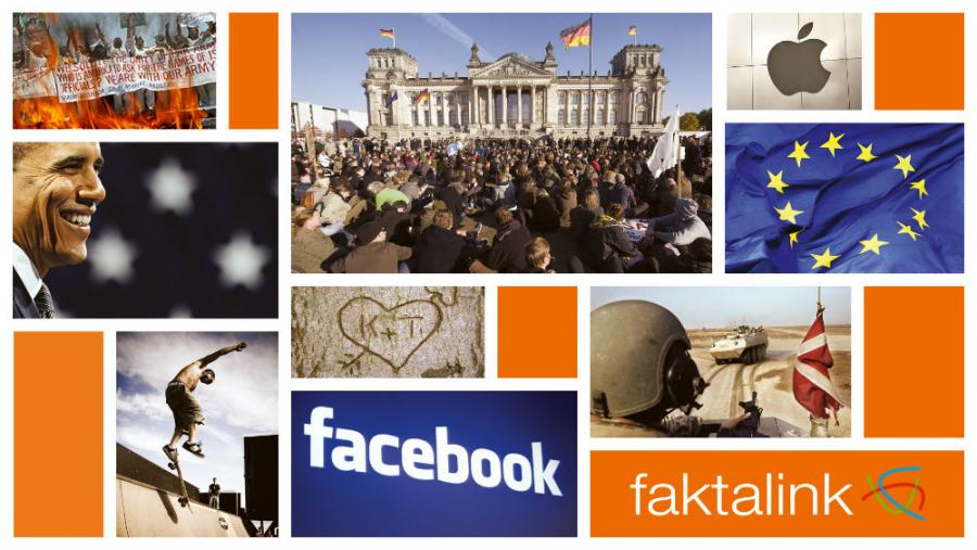 Faktalink - logo