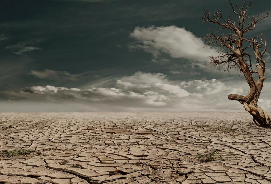 Klimaet i litteraturen