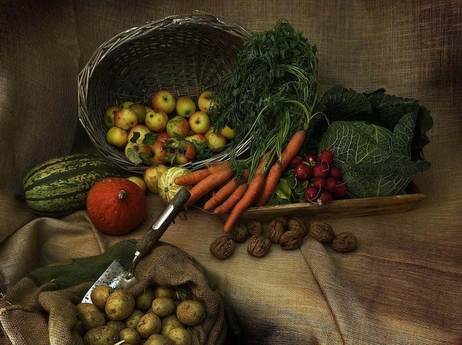 Forskellige grøntsager som fx gulerødder, kål, kartofler, græskar og radiser