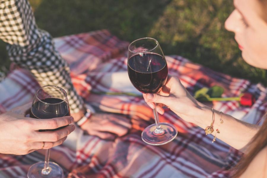 Romantisk picnic i det grønne