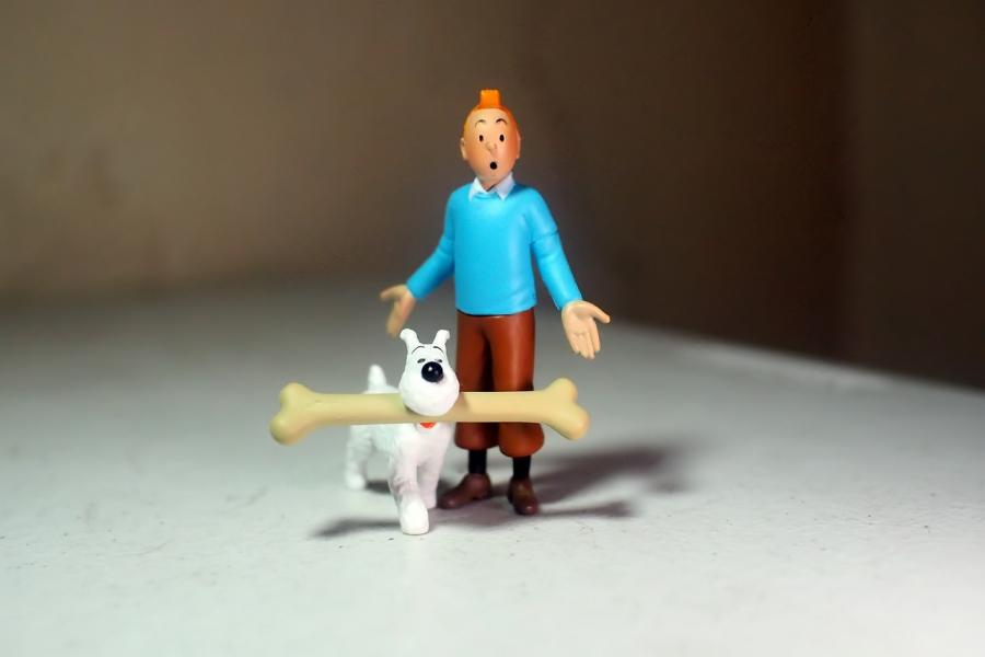 Tintin fylder rundt