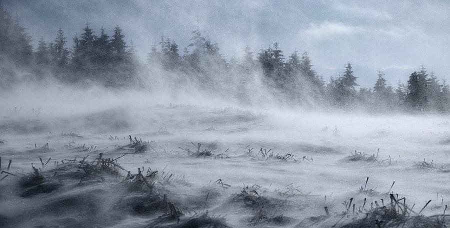 Krimien Vinterlandskab er skrevet af to garvede krimireportere.