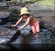 Thea og den vilde flod